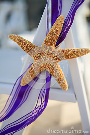 Starfish purple ribbon