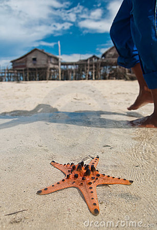 Starfish sits on sand
