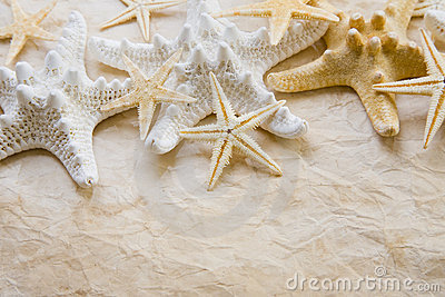 Starfish on stained paper