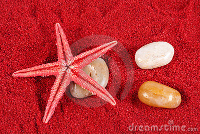 Starfish and stones on the red sand