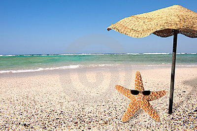Starfish and summer