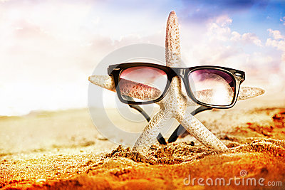 Starfish with sunglass