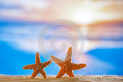 Starfish  with sunrise ocean , beach and seascape