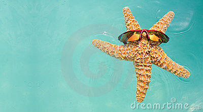 Starfish Swimming Pool Vacation