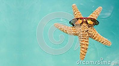 Starfish Swimming Pool Vacation