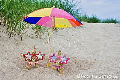 Starfish under umbrella