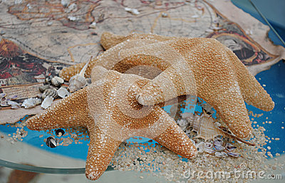 Starfishes on a glass and treasure map