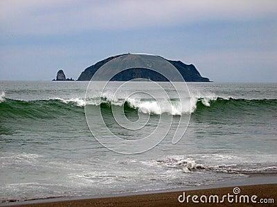 Starichkova Island