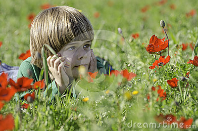 Staring at an Anemones field