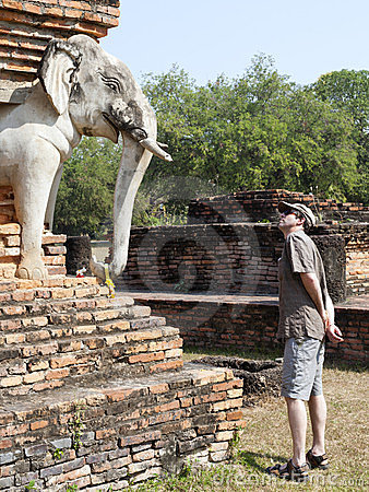 Staring at the Elephants in Sukothai