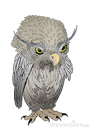 Staring owl chick cartoon