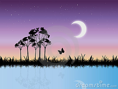 Starry Night Scene in Swamp Vector