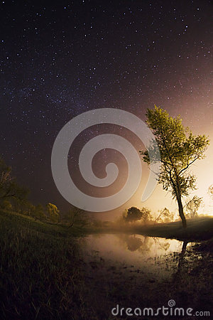 Free Starry Night, The Stars Over The Lake, Green Grass, Trees Illuminated By A Flashlight Royalty Free Stock Image - 78473516