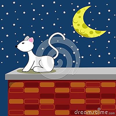 Starry Night White Cat