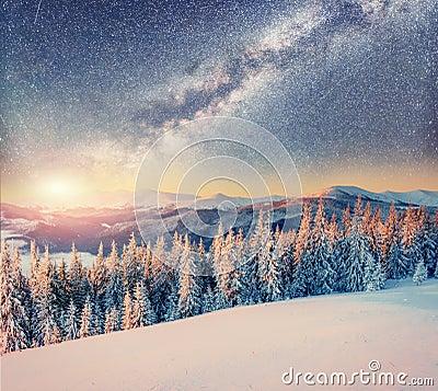Free Starry Sky In Winter Snowy Night. Carpathians, Ukraine, Europe Royalty Free Stock Photo - 85982465