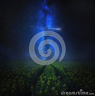 Free Starry Sky Over Blooming Rape Seed Field, Fine Art Landscape Royalty Free Stock Image - 108478776