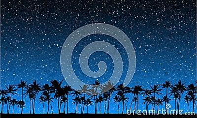 Stars Behind Palms