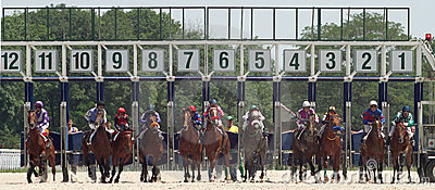 Start gates for horse races. Editorial Stock Photo