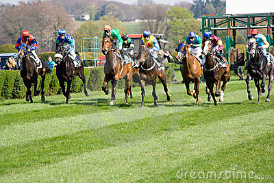 Start of Horse Racing
