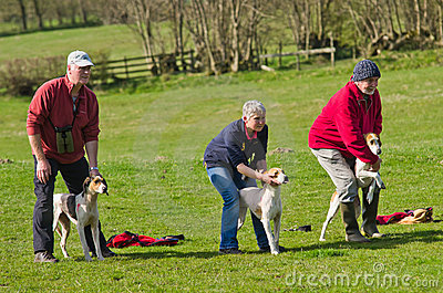 Start of a Hound Trail Editorial Photography