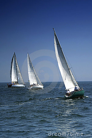 Free Start Of A Sailing Regatta Stock Image - 1296471
