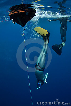 Starting the free dive