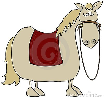 Startled Horse