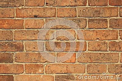 Stary ściana z cegieł