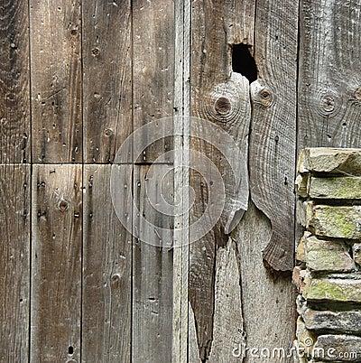 Stary drewna
