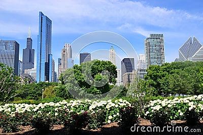 Stationnement Chicago de Grant