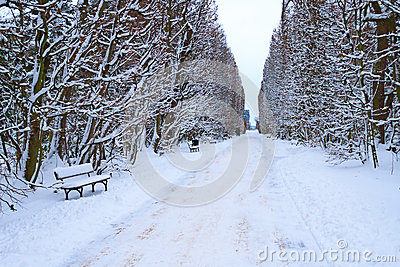 Stationnement de Danzig Oliwa dans l horaire d hiver