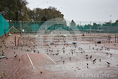 Stationnement de rive après ouragan Sandy Photo éditorial