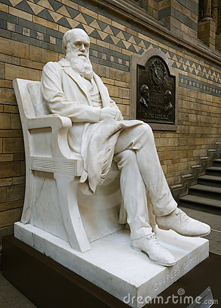 Free Statue Of Darwin Stock Photography - 8087582