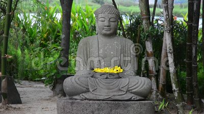Statue Of Stone Buddha In The Garden Stock Video Video Of Meditating Oriental 55240935