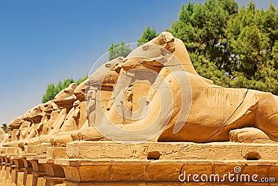 Statues of Ram-headed sphinxes in Karnak