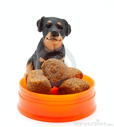 The statuette  of dog with the dog s food