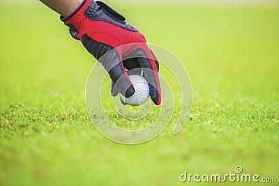 Stawia piłkę golfową