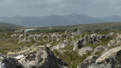 Moss on Stone Walls. Steady, close up shot of moss on rocks, rack focus to medium wide shot of rocky prairie stock footage