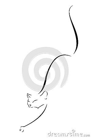 Steal cat contour