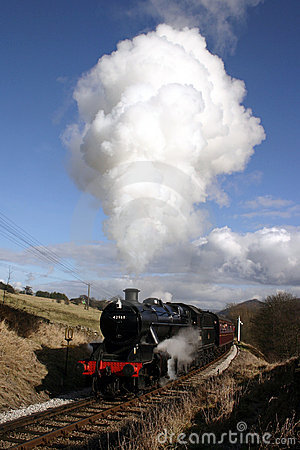 Steam Train in Bronte Country
