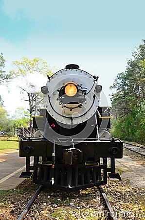 Steamer 300