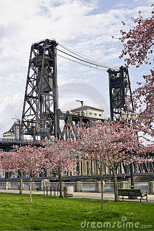 Steel Bridge at Spring Time