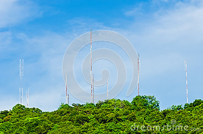 Steel communication antenna from tree to sky