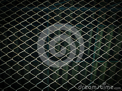 Steel mesh wire