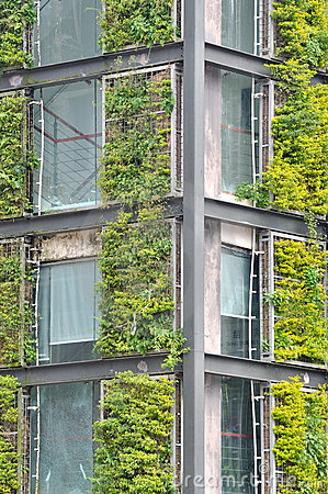 Steel structure building covered by green plant