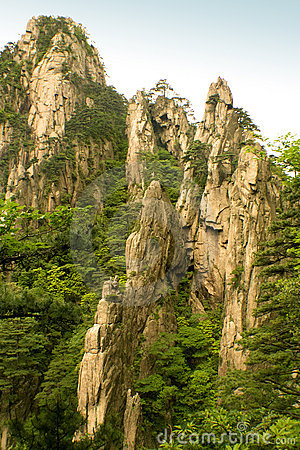 Free Steep Cliffs And Pine Trees, Huangshan, China Royalty Free Stock Photo - 9956975