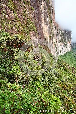 The steep rock wall of Monte Roraima