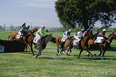 Steeplechase Race Editorial Stock Image