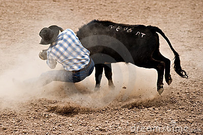 Steer Wrestling Stock Photography - Image: 13266092