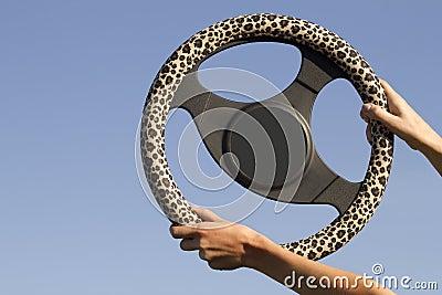 Steering automobile hands female